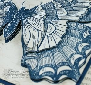 Paper Toile Technique Swallowtail Stamp Set www.stampcrazywithalison.ca