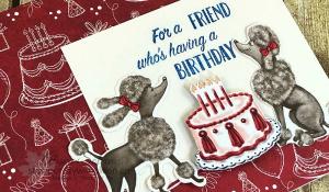 Just in Case Birthday Memories 1 www.stampcrazywithalison.ca