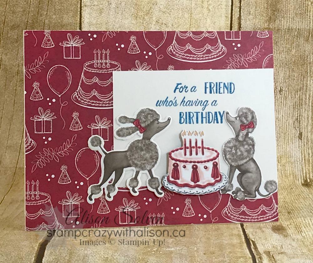 Just in Case – Birthday Memories Suite Poodles