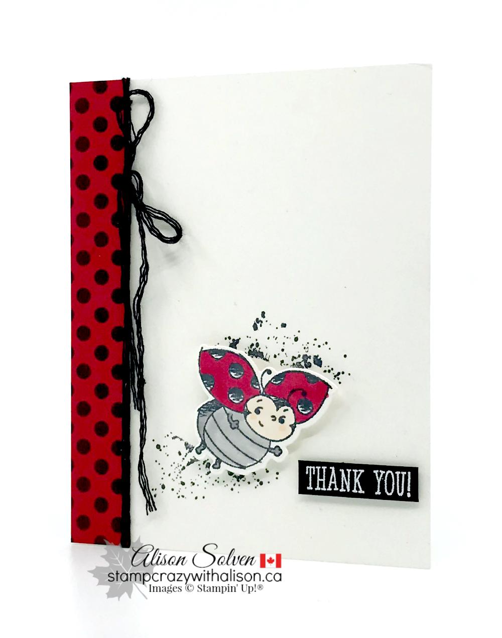 Little Ladybug Free Host Set