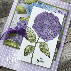 Hydrangea Haven Stamp Set by Stampin Up Sunday Sketches car template (2)