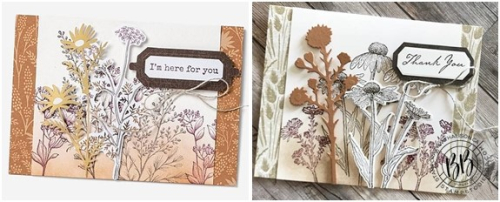 Border Buddies Just in CASE card page 44 using the Nature's Harvest stamp set by Stampin' Up! (2)