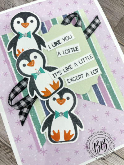 Just in Case Penguin Place-2